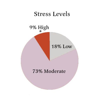 Stress levels for PhD students impact their ability to succeed in their studies